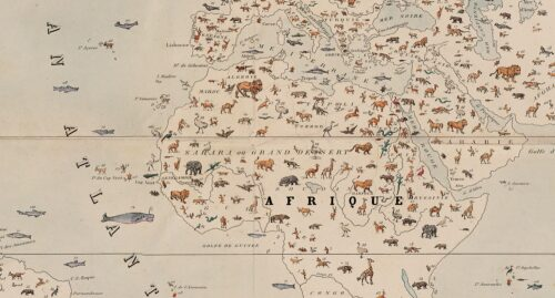 Planisphère zoologie détail Perrot.
